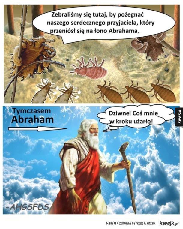 Biedny Abraham