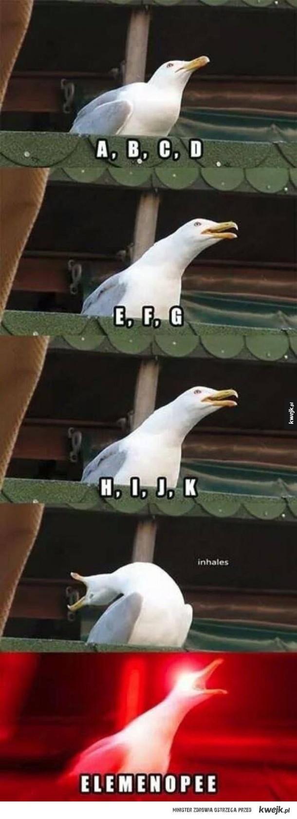 Kiedy mówię alfabet
