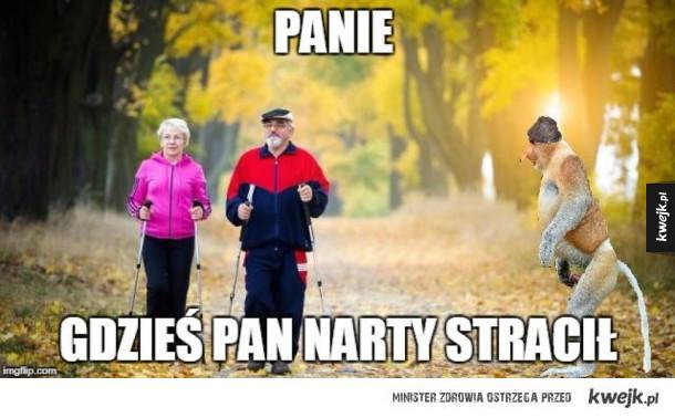Nordic walking? A komu to potrzebne?