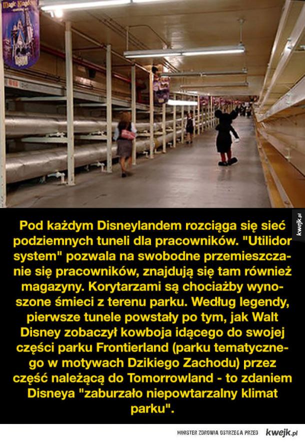 Pracownicy Disneylandu zdradzają jego sekrety
