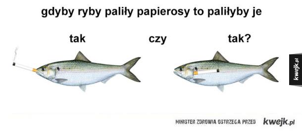 palące ryby