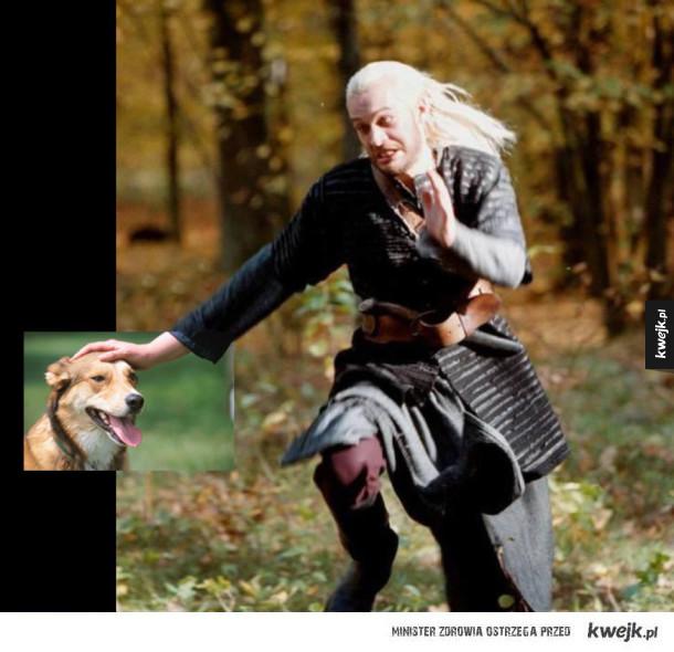 Głaskaj Geralt