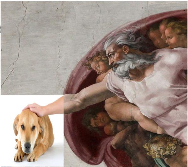 GOD - DOG