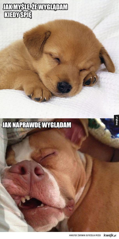 Ja kiedy śpię