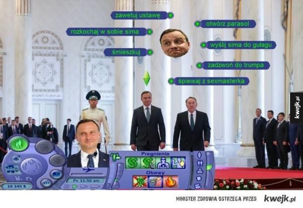 Duda w Simsach