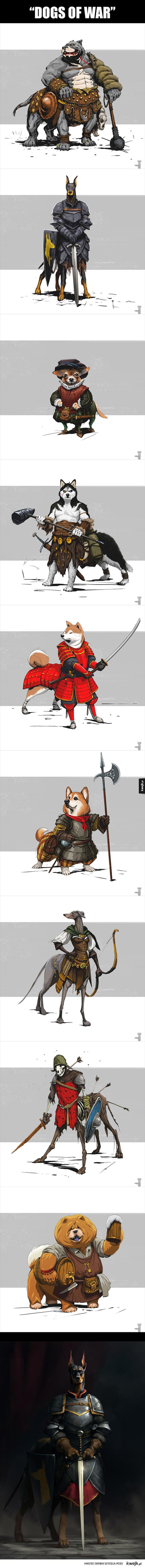 Gdyby pies nosił zbroję...