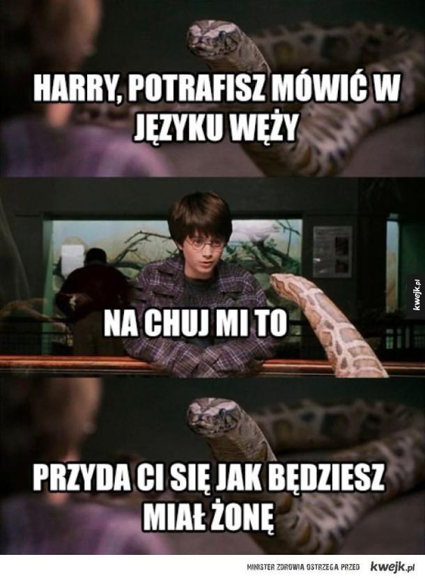 Język węży
