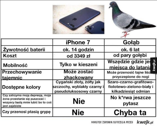 iPhone 7 VS Gołąb