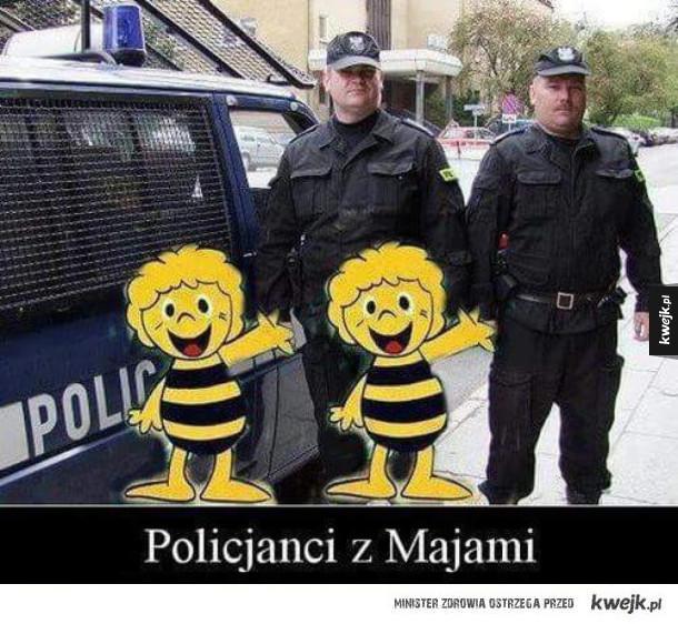 Policjanci z majami.