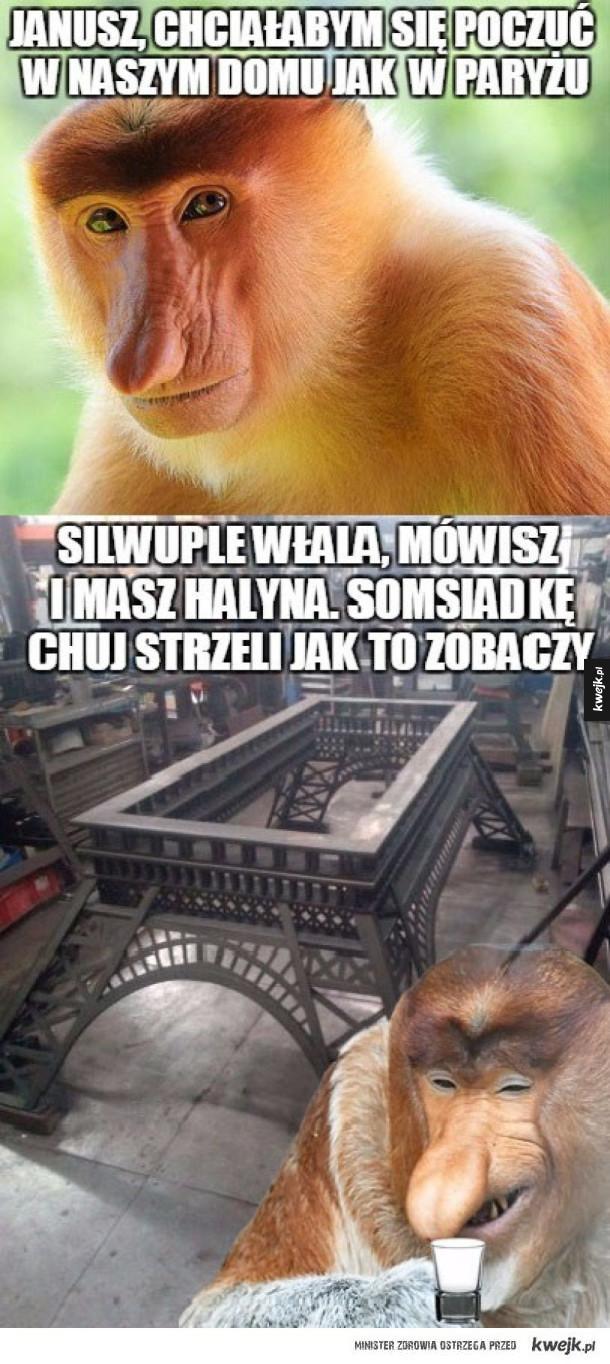 Silwuple Halina