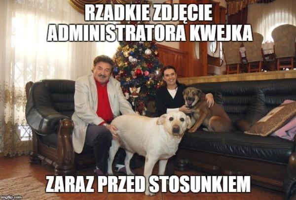 juz zostawcie te psy!