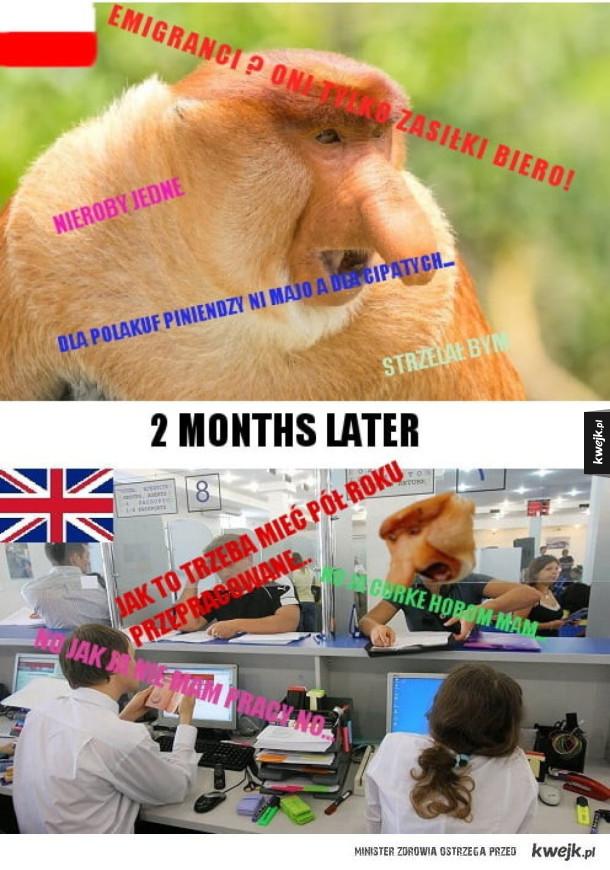 Anglia dla Anglików i Polaków