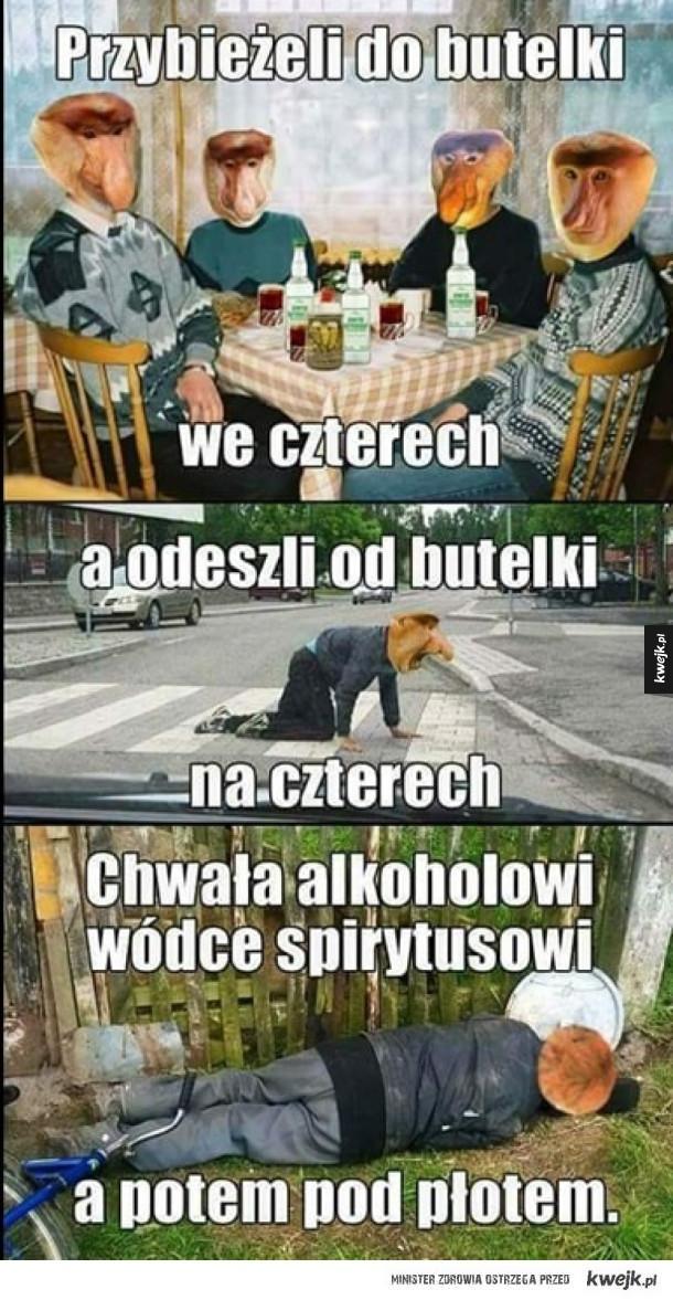 Polska kolęda