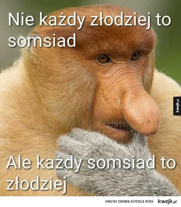 Polskie przysłowie