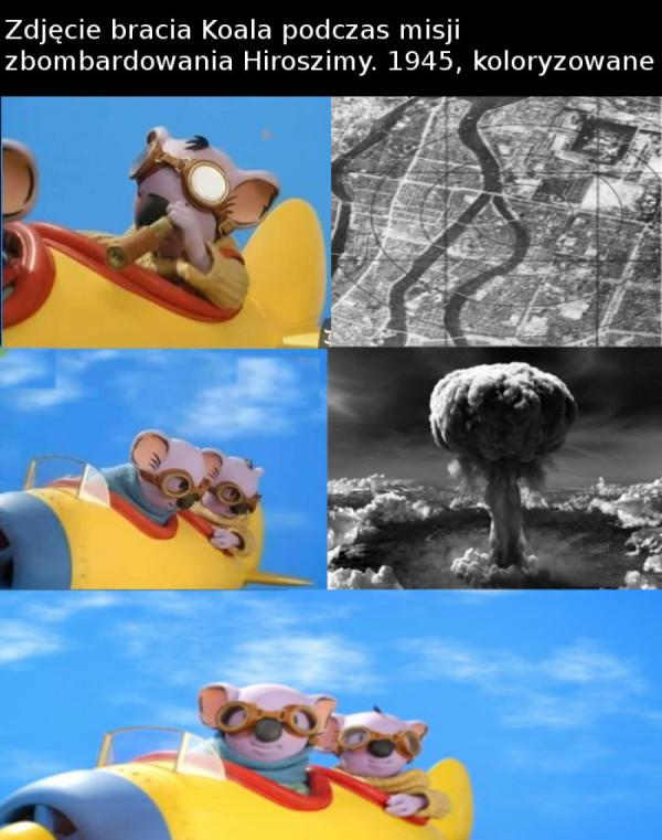 "Dywizjon ""Koala"""
