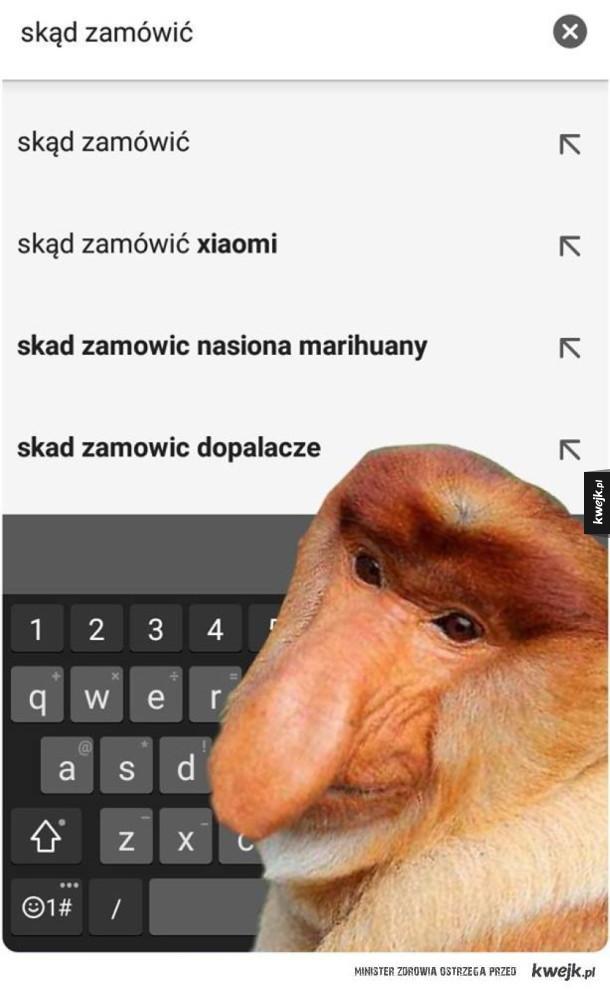 Jedyne prawilne wyszukiwanie