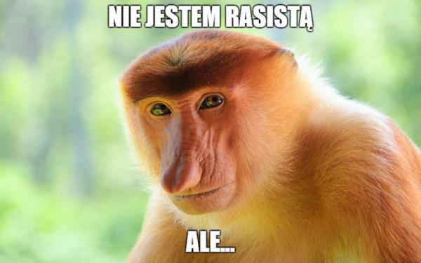 Nie jestem rasistą