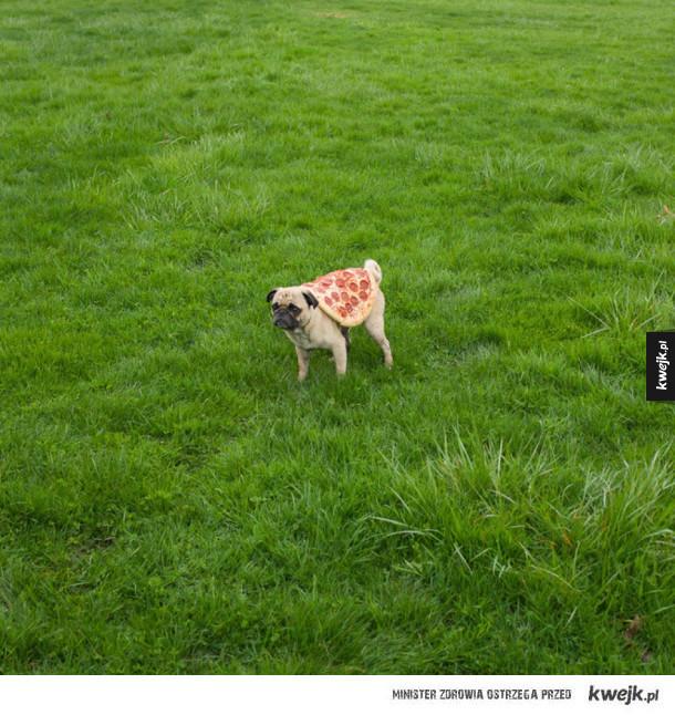 Artystyczne zdjęcia pizzy!