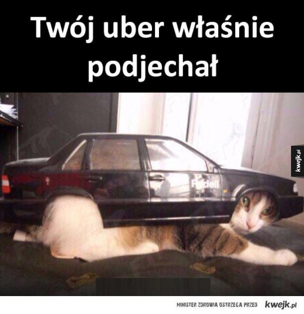 Twój uber