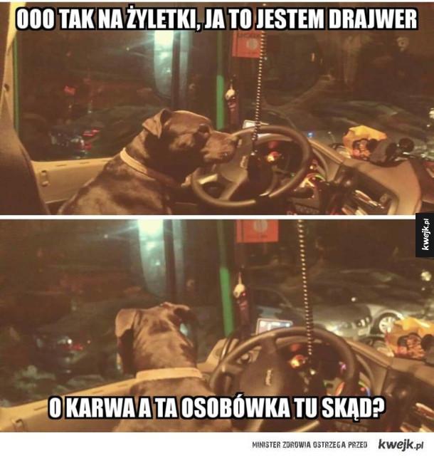 Ja to jestem kierowca