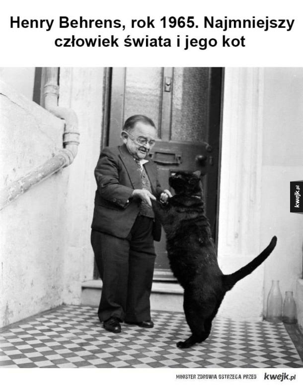 W sumie ten kot to wygląda na sporego