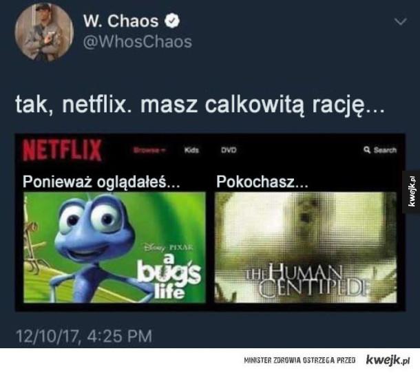 Polecany film