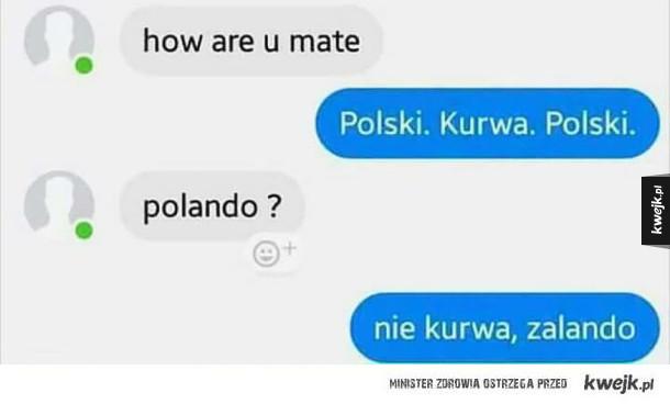 Rozmowa z Polakiem