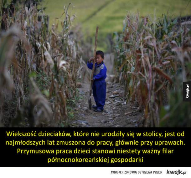 Dzieciństwo w Korei Północnej