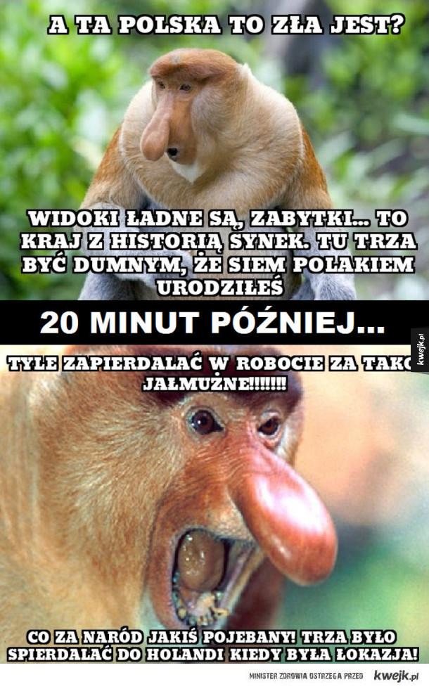 Janusze polskości