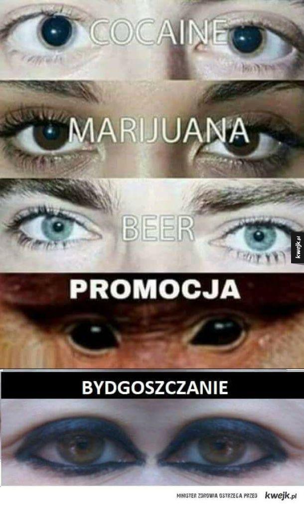 Ahh Ci Bydgoszczanie