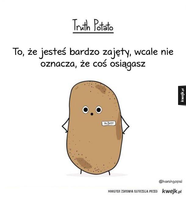 Ziemniak, który prawdę Ci powie (nawet tą bolesną)