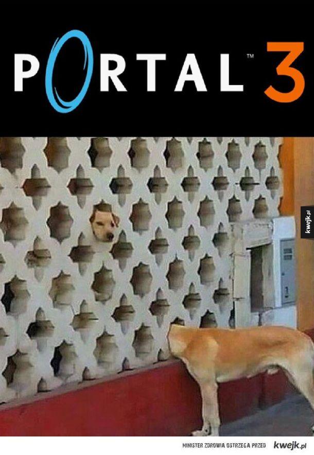 Nowy Portal wygląda naprawdę dobrze