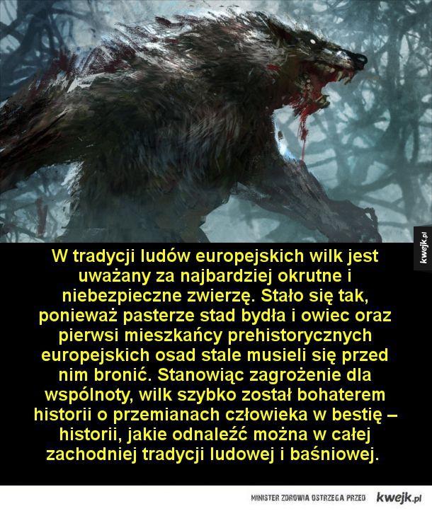 Wilkołaki, bestie z koszmarów