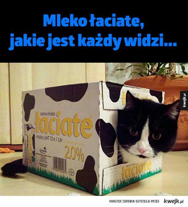 Pyszne mleko