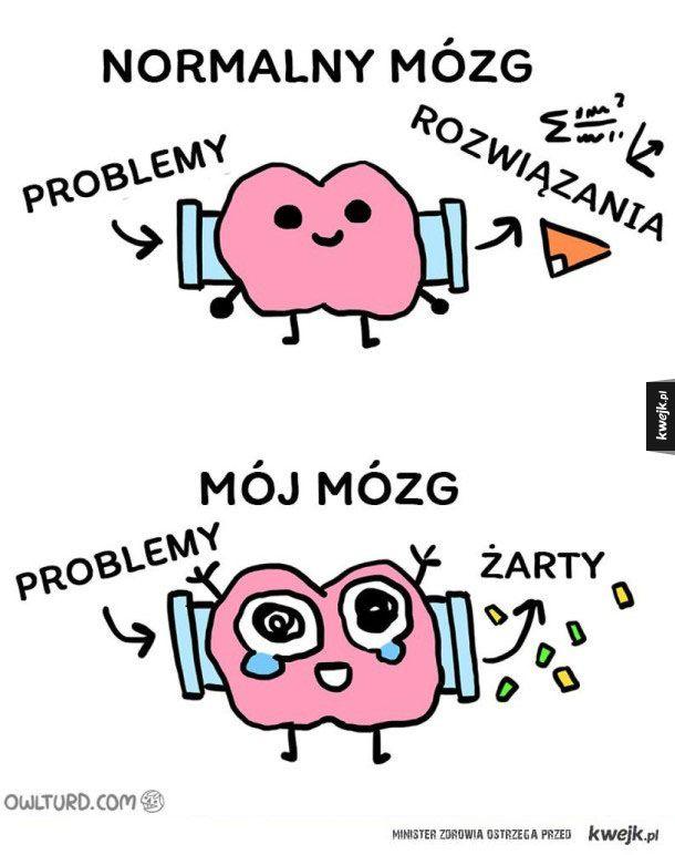 Normalny mózg vs mój