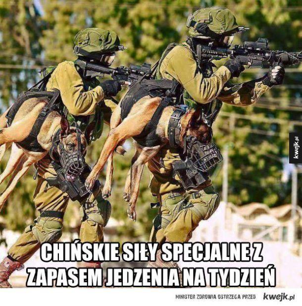 Chińskie siły specjalne