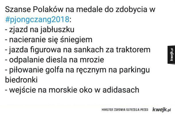 Polska na olimpiadzie zimowej