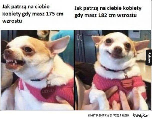 randki czeskich narzeczonych