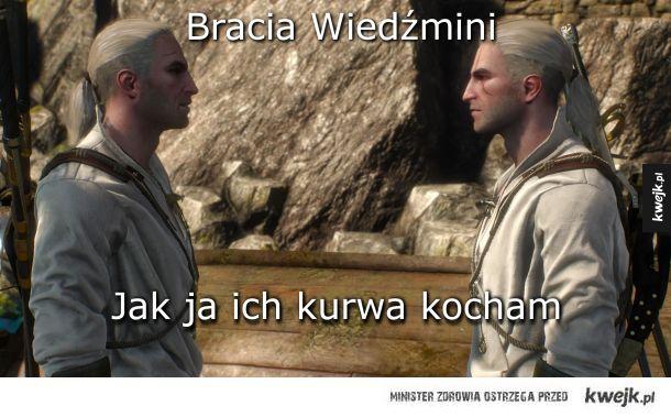 Bracia Wiedźmini