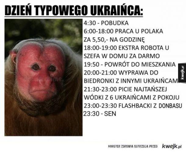 Dzień typowego Ukraińca