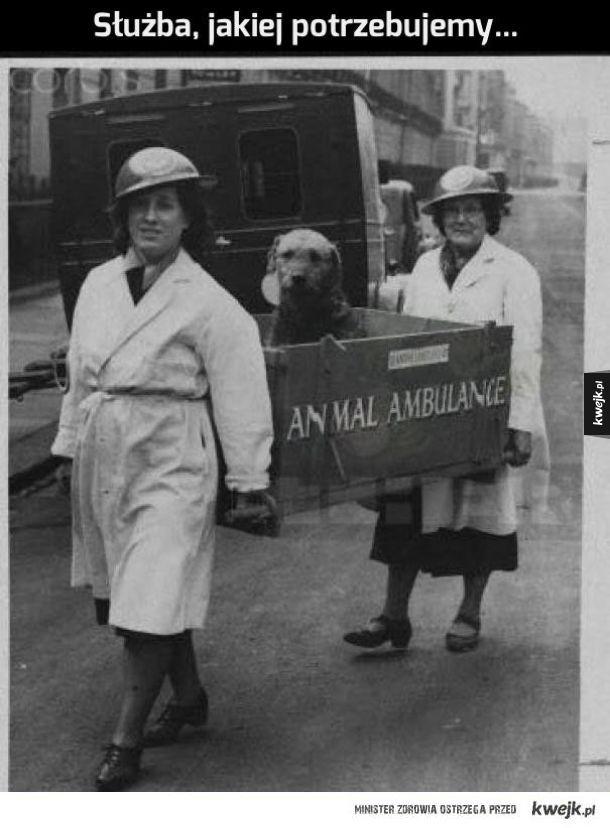 To się nazywa ambulans