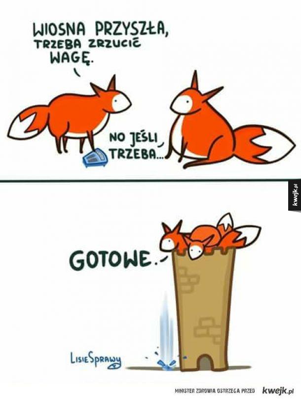 Liski zrzucają wagę
