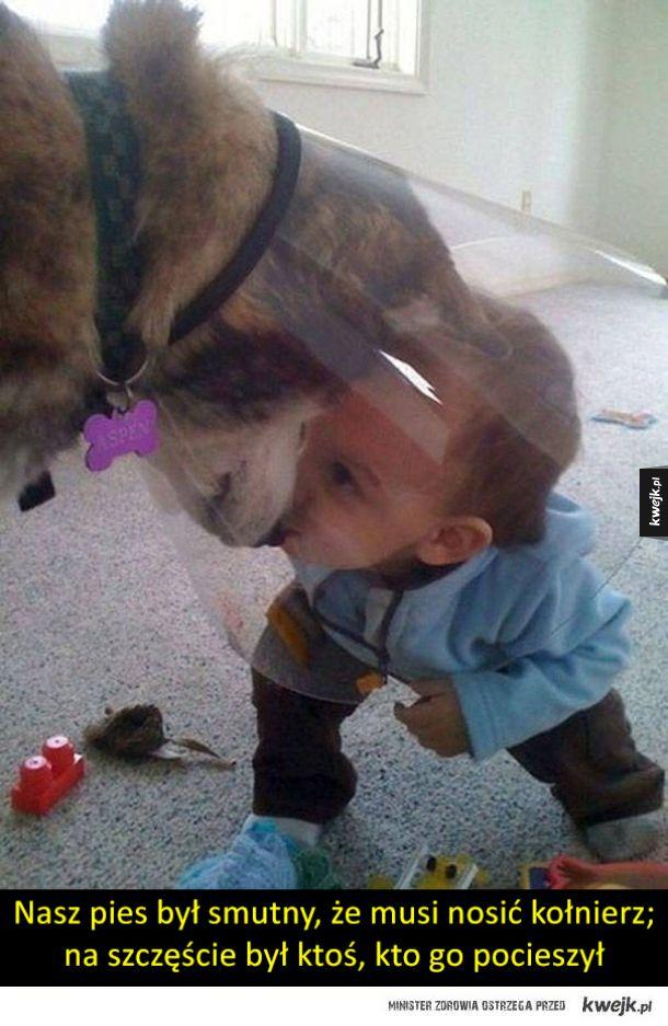Dzieci i psy to najsłodsze połączenie