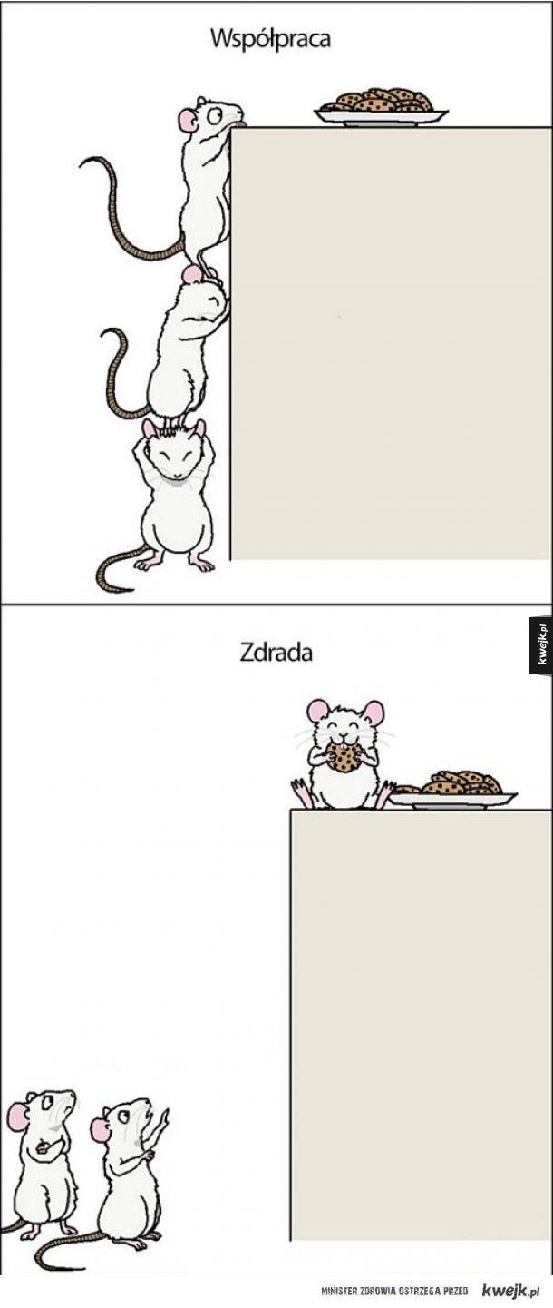 Myszełki
