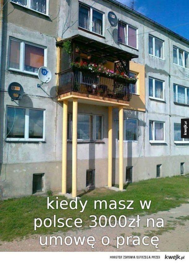 Polski wygryw