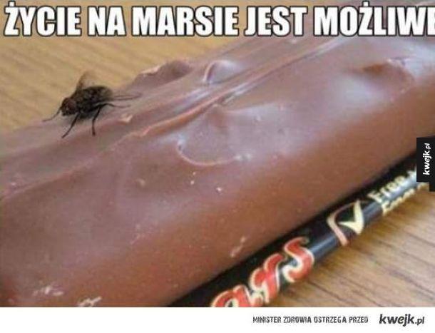 Życie na Marsie