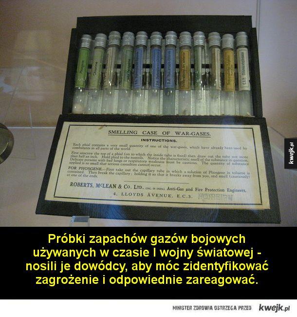 Dziwne eksponaty, które można znaleźć w muzeum