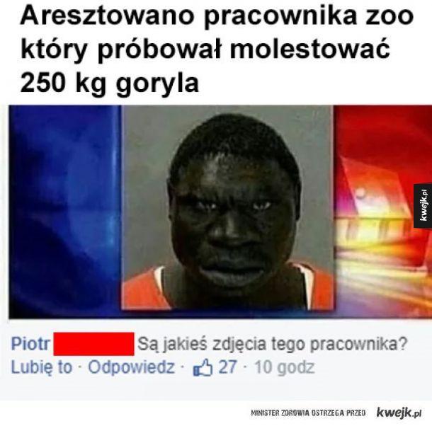 Pracownik zoo