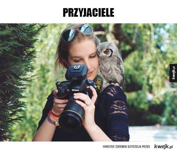 Fotogeniczn sowa