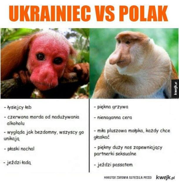 Ukrainiec kontra Polak